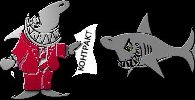 курсы создания сайтов спб, курсы создания сайтов москва, курсы создания сайтов начинающим, курсы создания сайтов онлайн, курсы по созданию сайтов, акулы бизнеса контракт