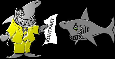акула бизнес контракт инфографика картинка фото рисунок
