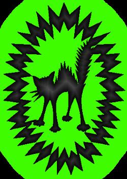 курсы по созданию сайтов с нуля, курсы по созданию сайтов в москве, курсы по созданию сайтов спб, картинка дикий кот