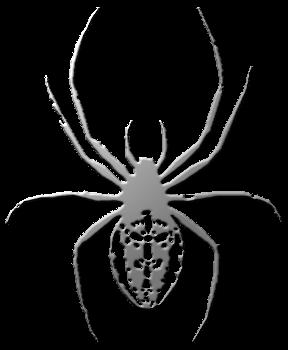паук крестоносец рисунок изображение скачать бесплатно сценка
